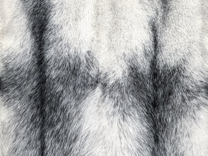 An In Depth Look at Mink Fur