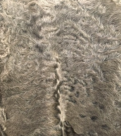An In Depth Look at Lamb Fur